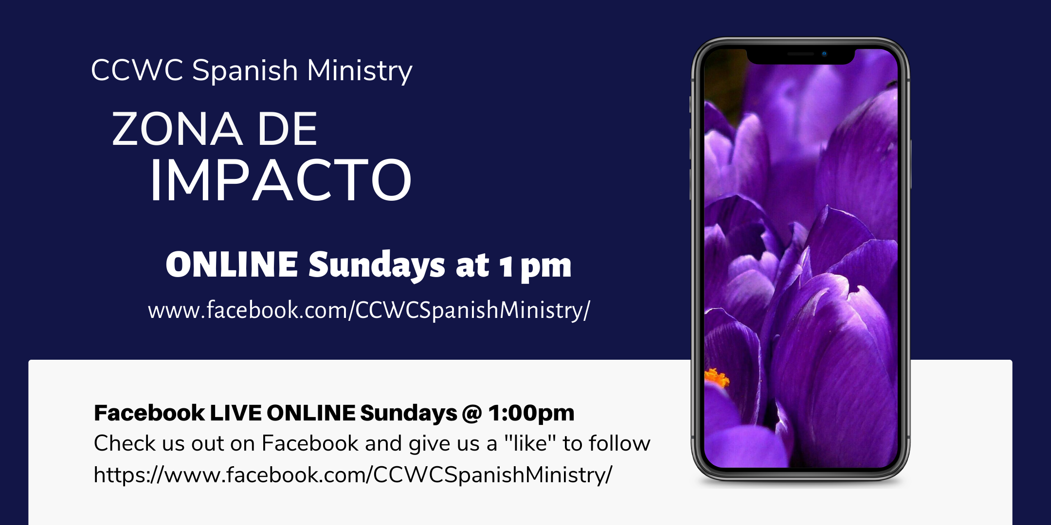 SPANISH MINISTRY Bible Study ONLINE